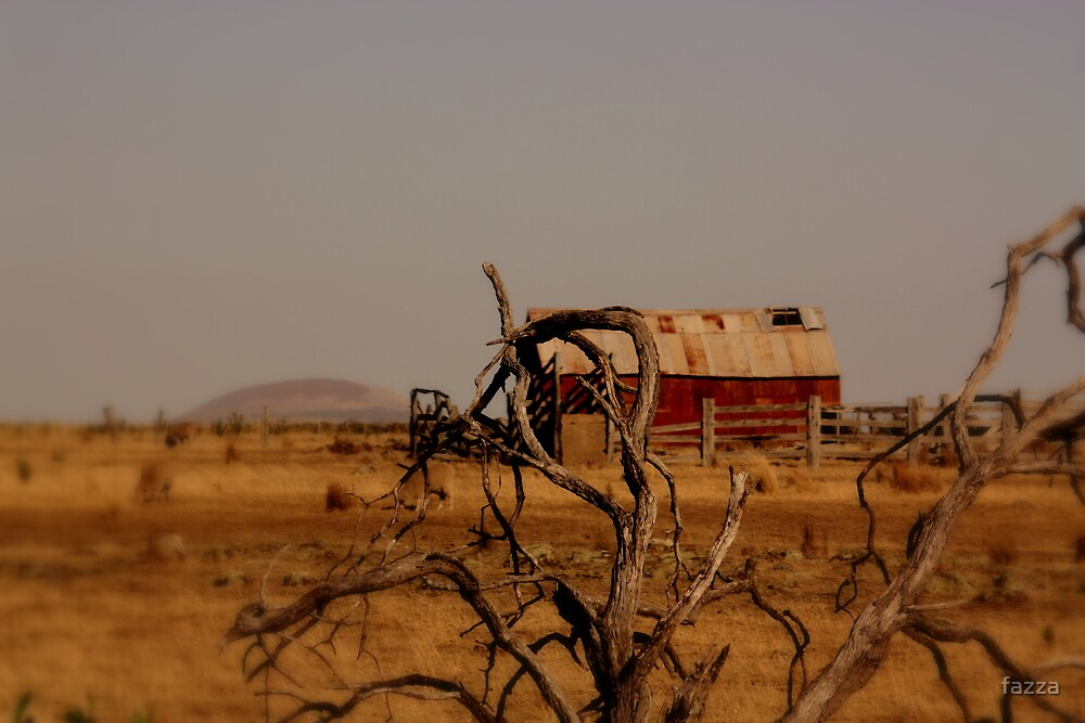 out,outback by fazza