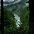 Gold Creek Lookout HDR by Michael Garson