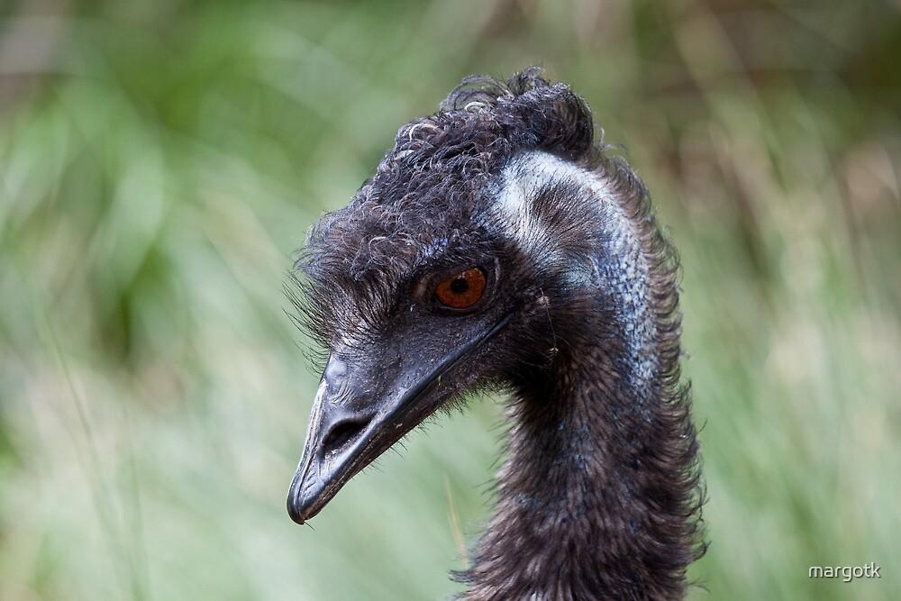 Emu by margotk