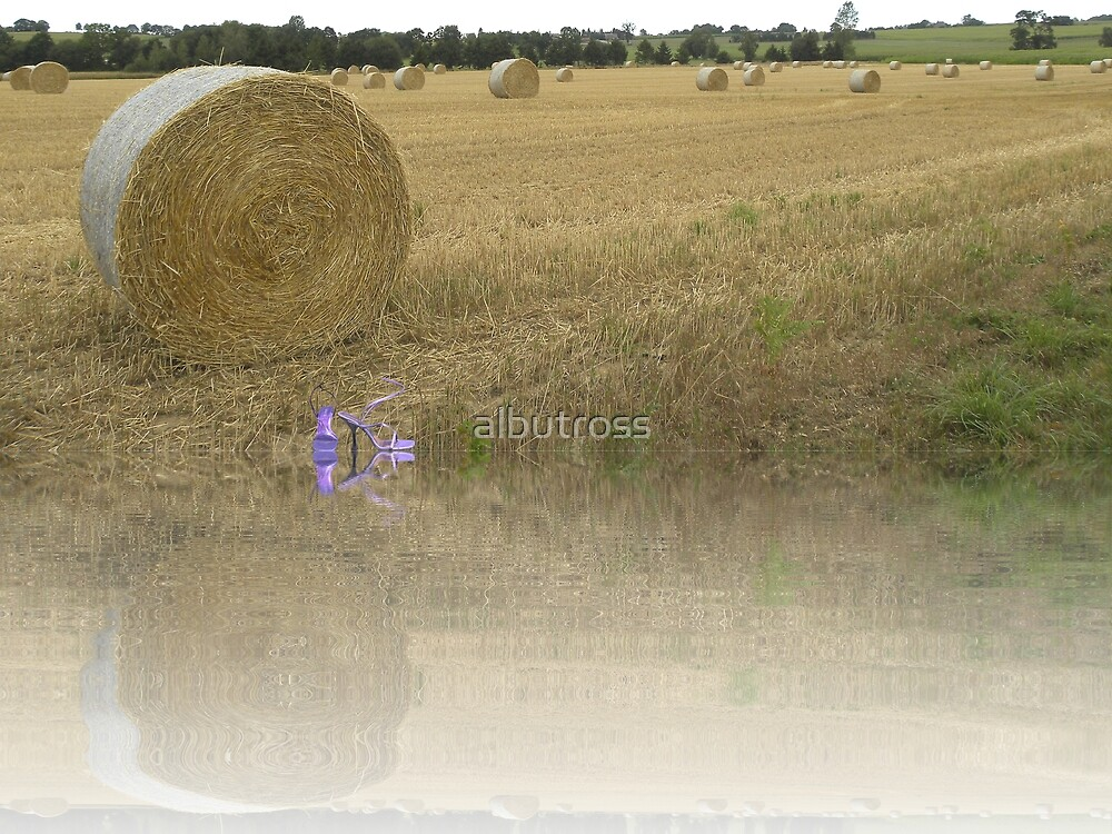 A Roll in the Hay. by albutross