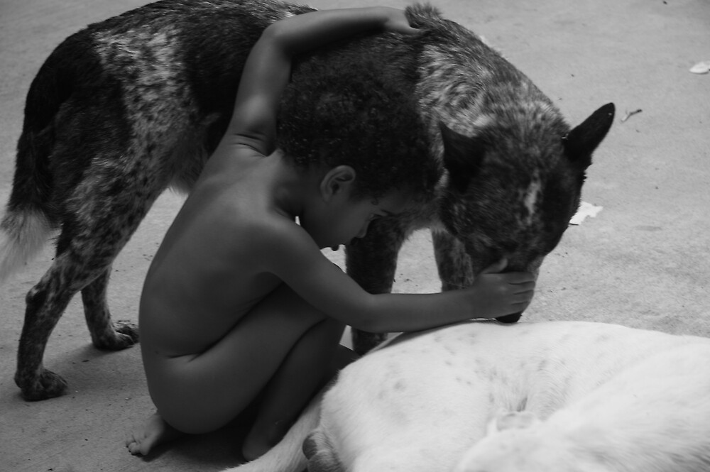 boy and dogs by carrolk