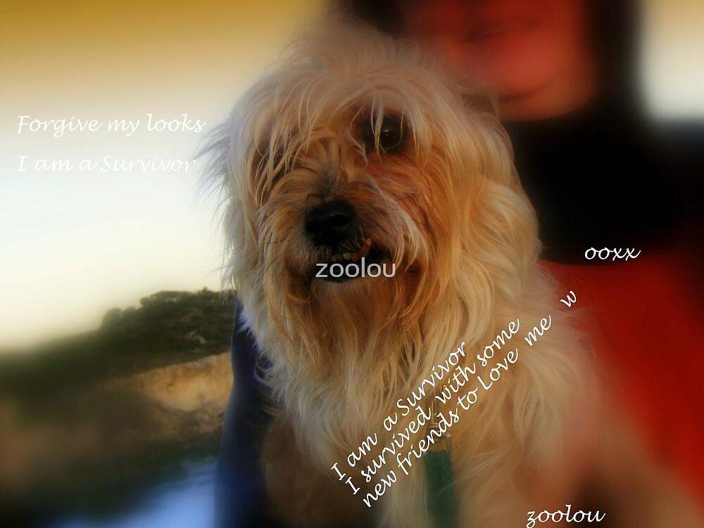 Forgive My Looks Im a Survivor by zoolou