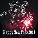 Happy New Year 2011 by Detlef Becher