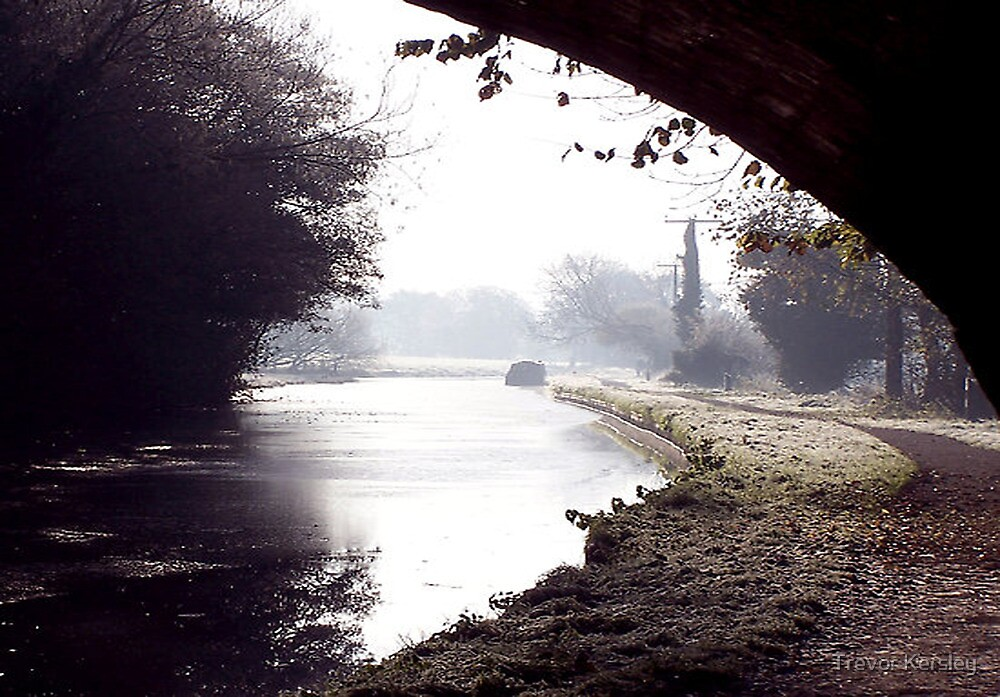 Down the Tow Path by Trevor Kersley