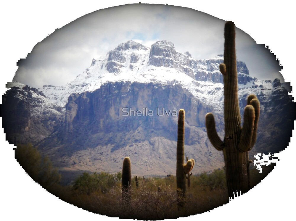 Superstition Mountain in January by Sheila Uva