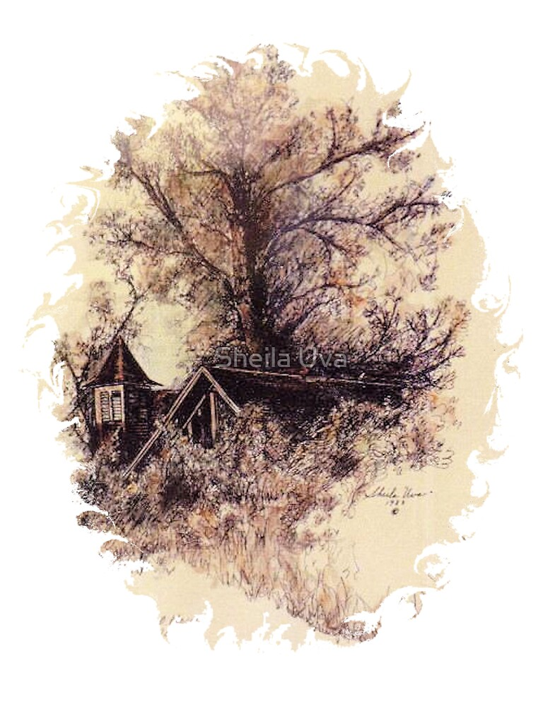 Old School House by Sheila Uva