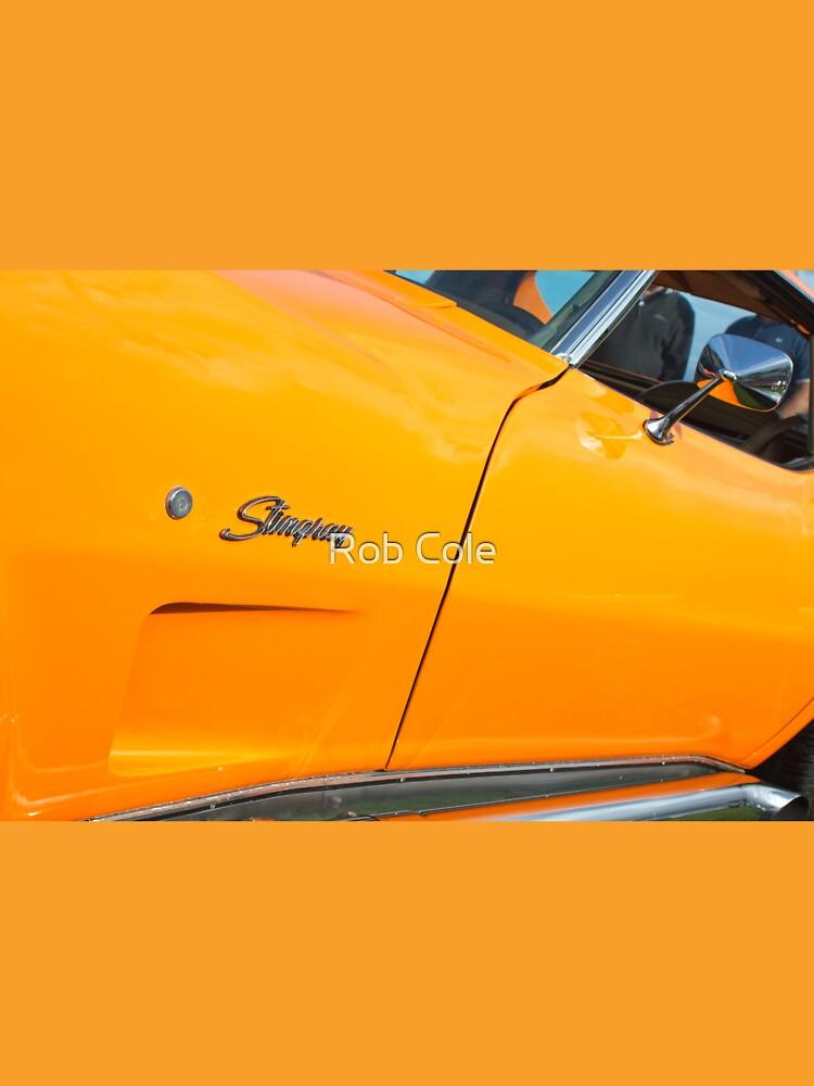 Bright Orange Chevrolet Corvette Stingray by robcole