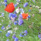 Wildflower Flurry by CreativeEm