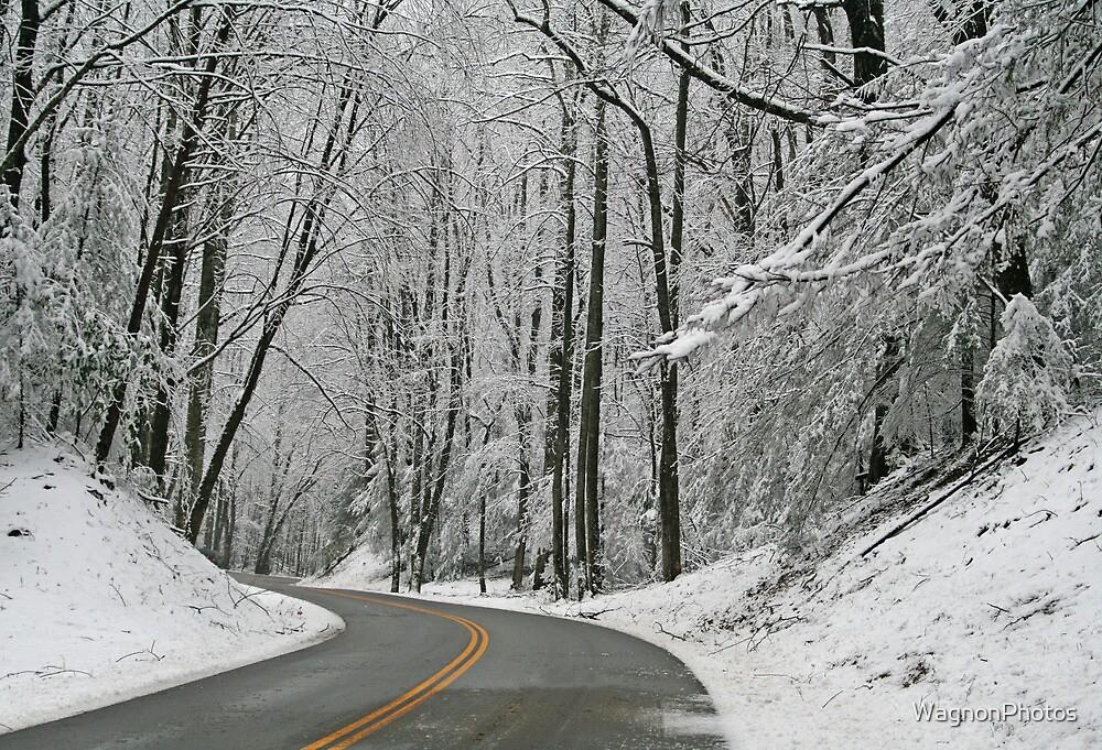 Winter Wonderland by WagnonPhotos