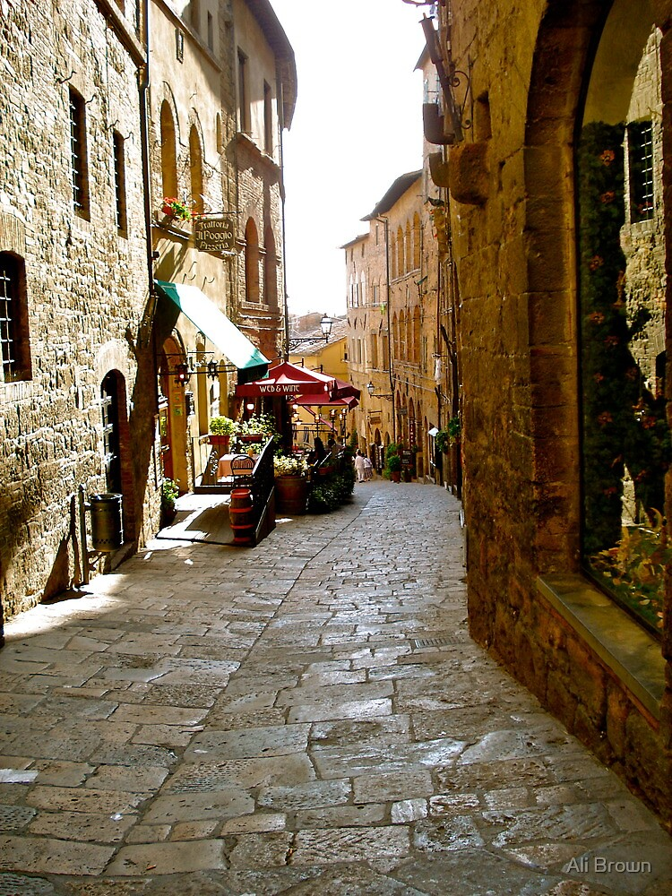 Cobbled  paths of Italy by Alison  Brown
