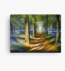 `Bluebell Light` Acrylics on Canvas  Canvas Print