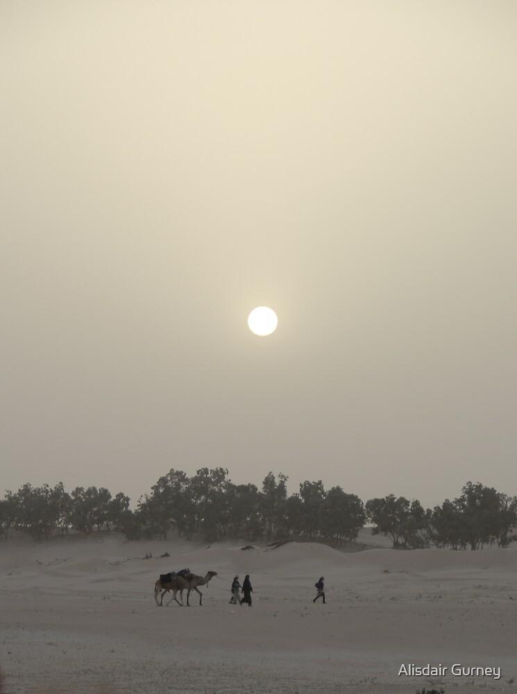 Sahara Sunset by Alisdair Gurney
