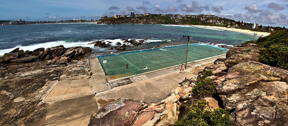 Freshwater Pool Panorama by Tim Oliver