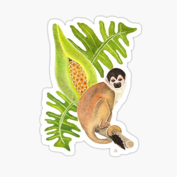 Squirrel Monkey for Climate Action Sticker