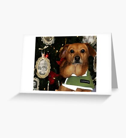 Rudy Greeting Card