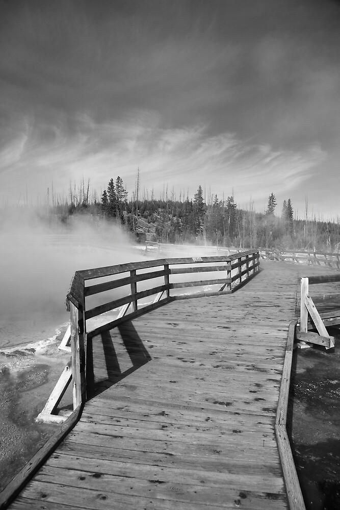 Yellowstone Park - West Thumb Geyser Basin by Frank Romeo