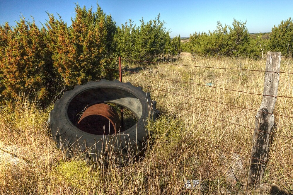 Tractor Tire & Barbed Wire Fence by Terence Russell