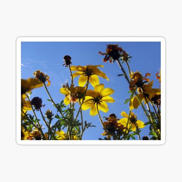 Sunshine Flowers Sticker