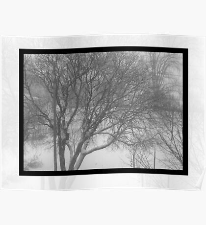 Winter Afternoon  Poster