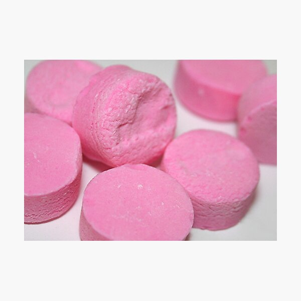 Pink Mints (PHOTOGRAPH) Photographic Print