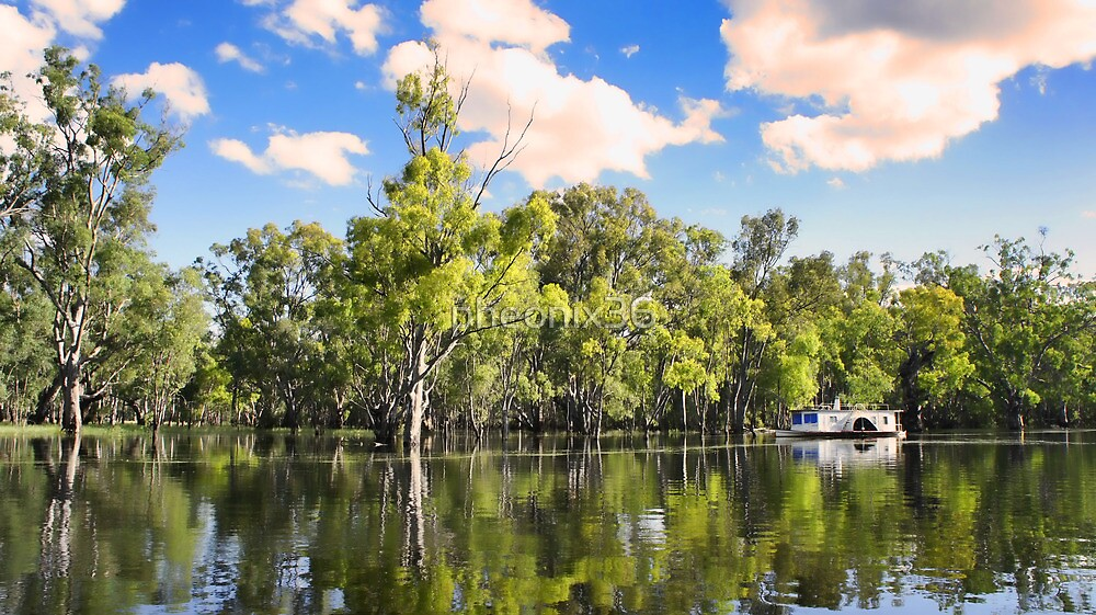 Murray River in flood by pheonix36