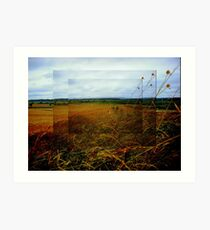 Between Towoomba and Roma Art Print