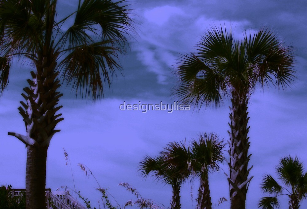 Palms in Carolina by designsbylisa