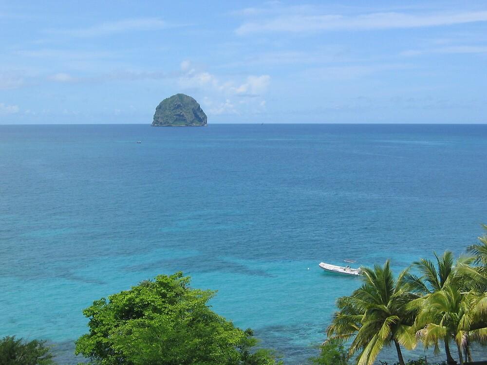 Diamond Rock - Le Diamant - Martinique FWI by verono972