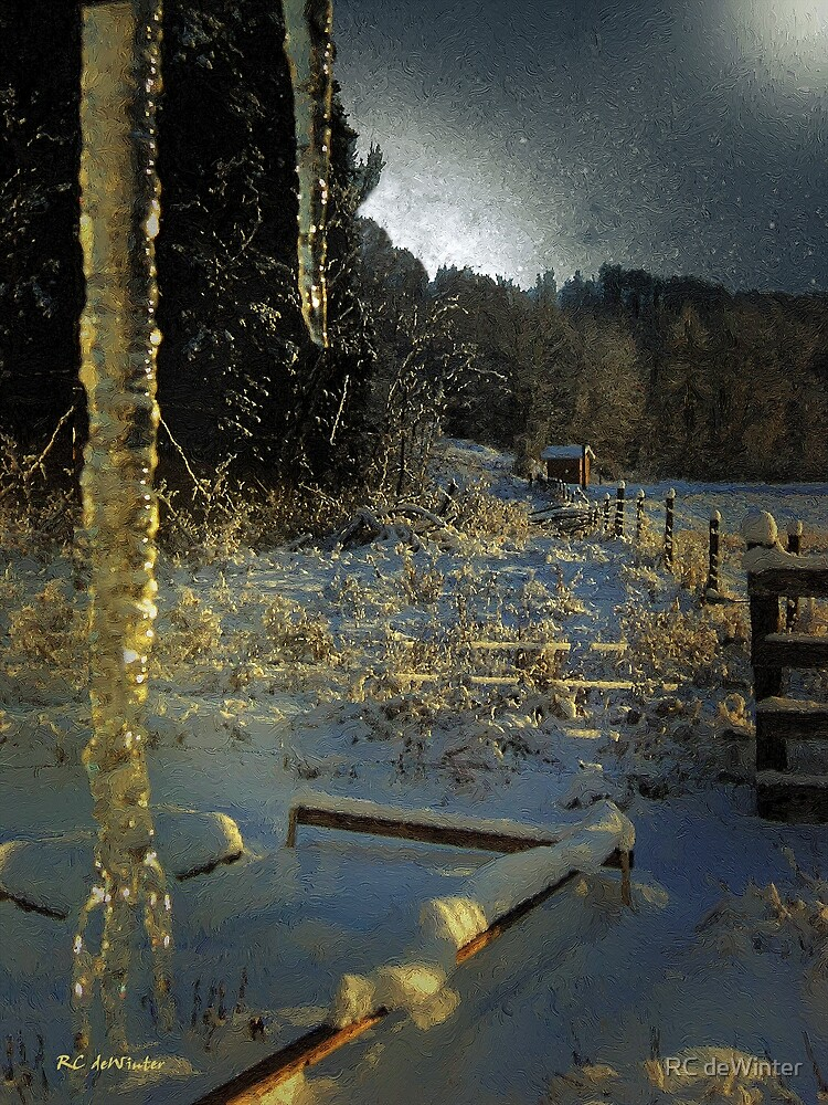 Icicles in Moonlight by RC deWinter