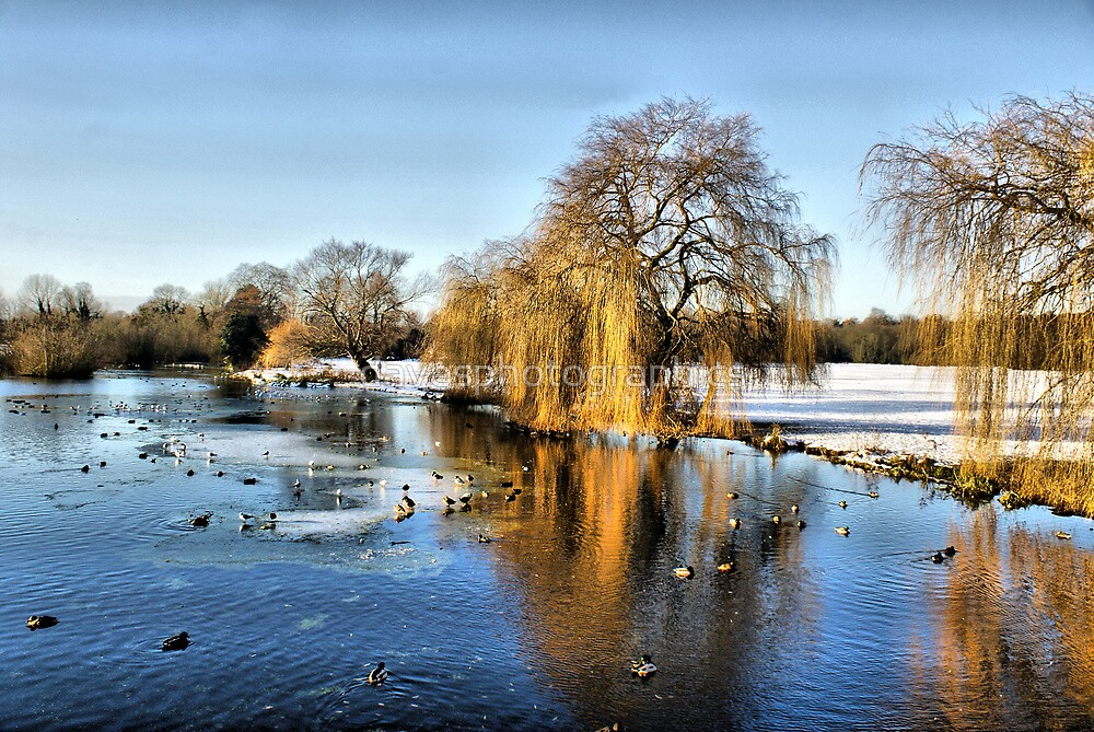 Foots Cray Meadows Lake  HDR by davesphotographics