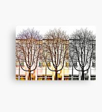 I wanted to be a Menorah Canvas Print