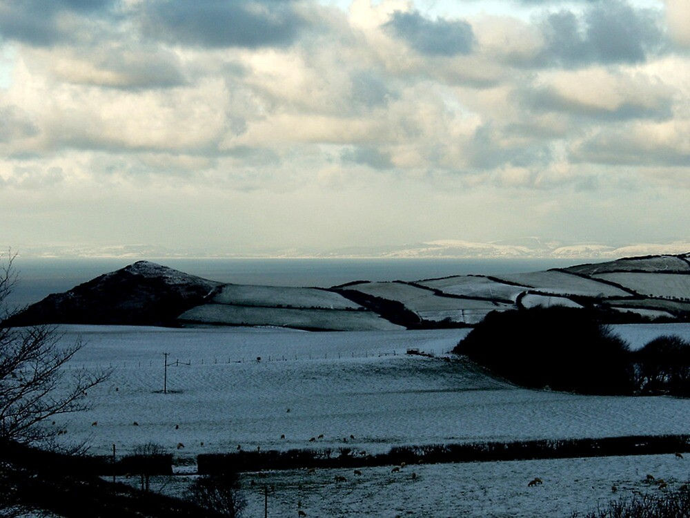 Winter Landscape No 2 by Andrew  Bailey
