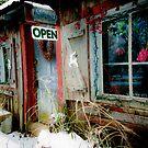 Festive Antique Store by Jeanne Sheridan