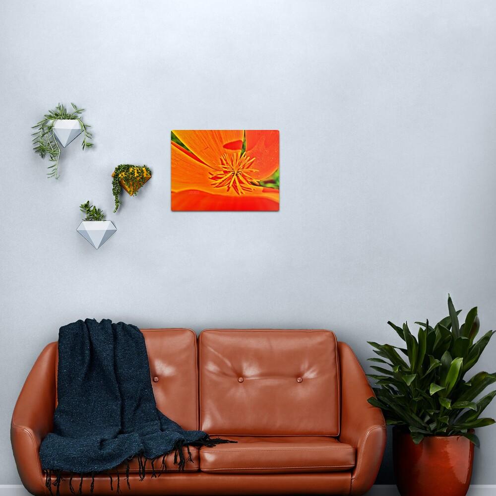 Orange Poppy Star Metal Print