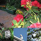 Feathered Friends Collage von BlueMoonRose