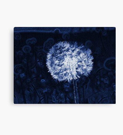 Dandelion Lines Canvas Print