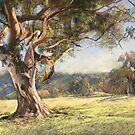 Tallarook Paddock Tree by Lynda Robinson