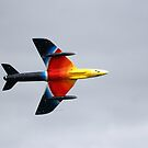 Hawker Hunter F58A by Wayne Gerard Trotman