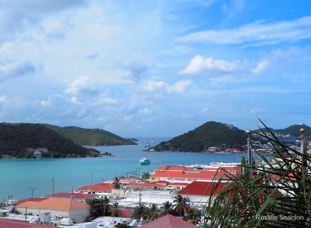 US Virgin Island View by Rosalie Scanlon