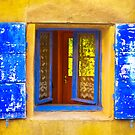 Blue Windows - Provence  by Rob Lewis