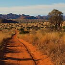 Road to nowhere by Explorations Africa Dan MacKenzie