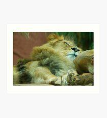 the lion sleeps tonight 1 Art Print