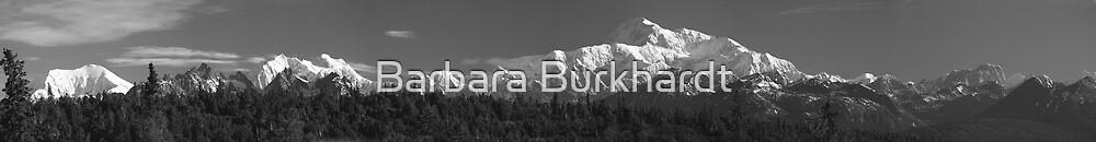 Panorama of Denali_Mt McKinley - A Black & White Study by Barbara Burkhardt