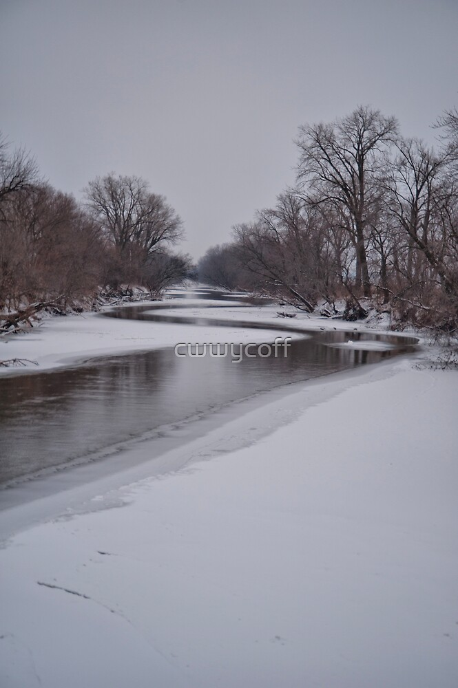 Meandering River in Winter by cwwycoff