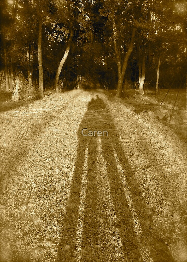 In the Shadow of Love by Caren