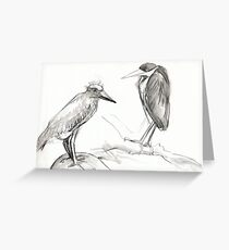 two birds standing around Greeting Card