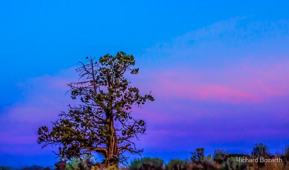 Redmond Sunrise 101 by Richard Bozarth