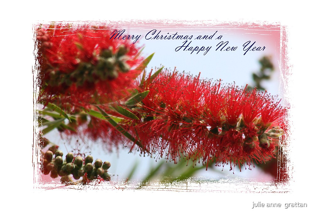 A very Happy and peaceful Christmas to all my friends on Red Bubble by julie anne  grattan
