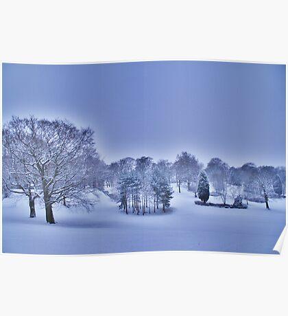 Frozen At Day Break ~ Peel Park ~ Poster