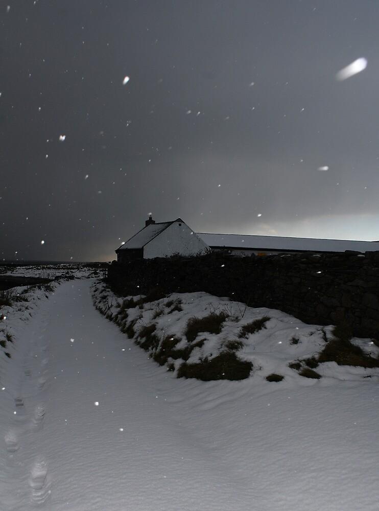 Kearney Winter Path in snowstorm by ragman